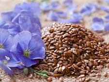 flaxseed225